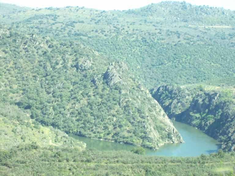 Vista desde los miradores del rio Duero
