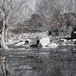 Rio Uces a su paso por Masueco
